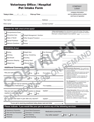 Carbonless Forms - Template 17 Veterinary Pet Intake
